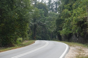 Really beautiful downhill cycling through the jungles of central Malaysia.